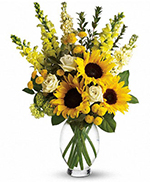 Here Comes The Sun by Teleflora
